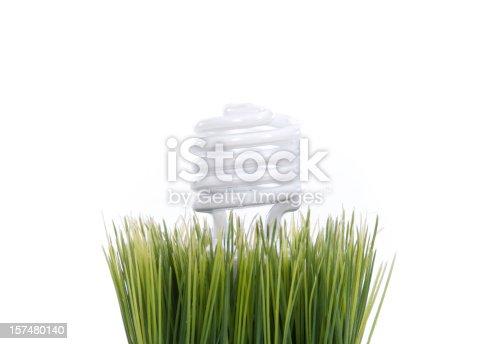 A light bulb in grass.