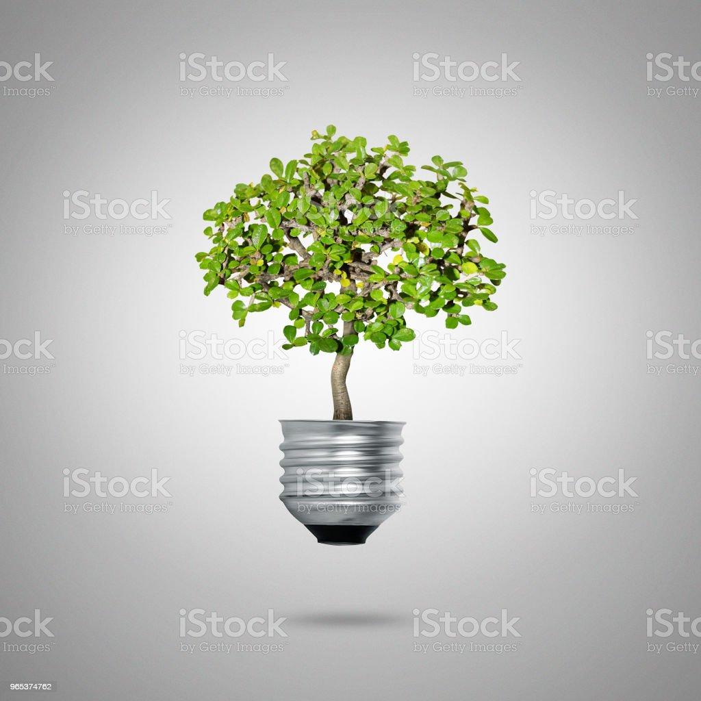 綠色能源符號生態學, 燈泡 - 免版稅人圖庫照片