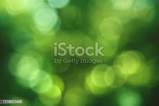 Green Environmental Nature Blurred Tree Leaf Bokeh Lights Background