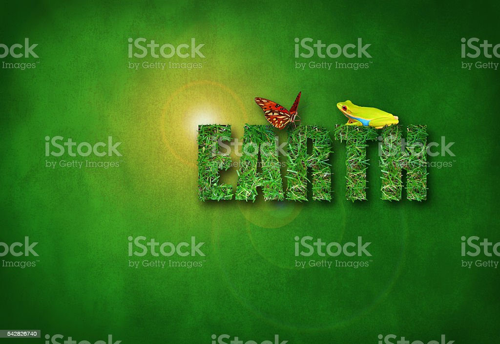 Green Environmental Earth with sun burst butterfly frog - foto de stock