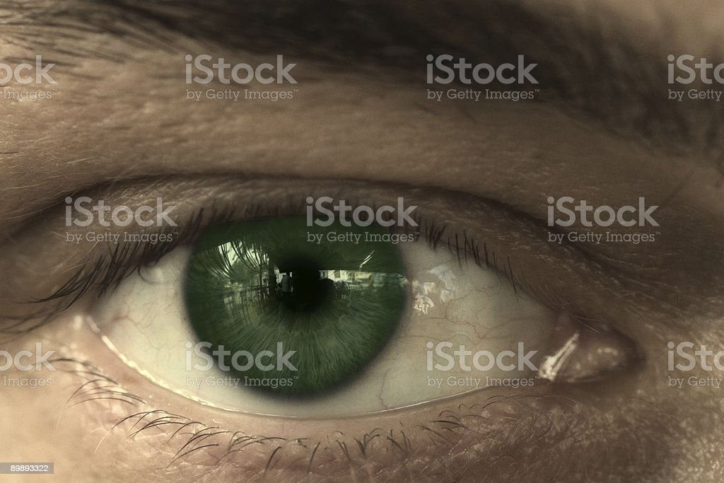 Green Eye 01 royalty-free stock photo