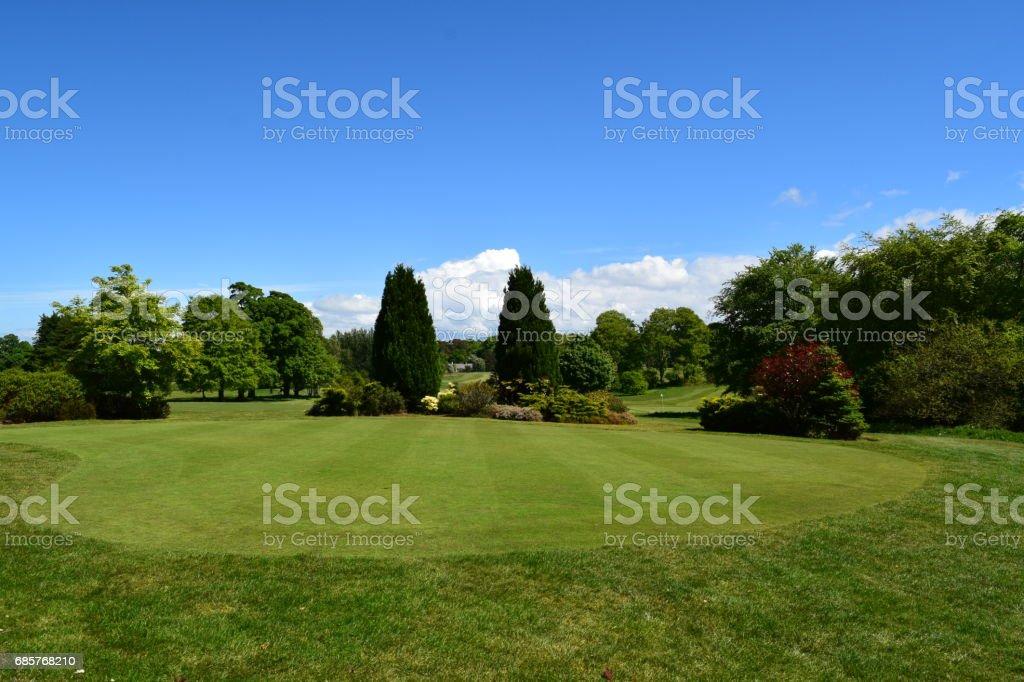 Green, fairway och träd royaltyfri bildbanksbilder