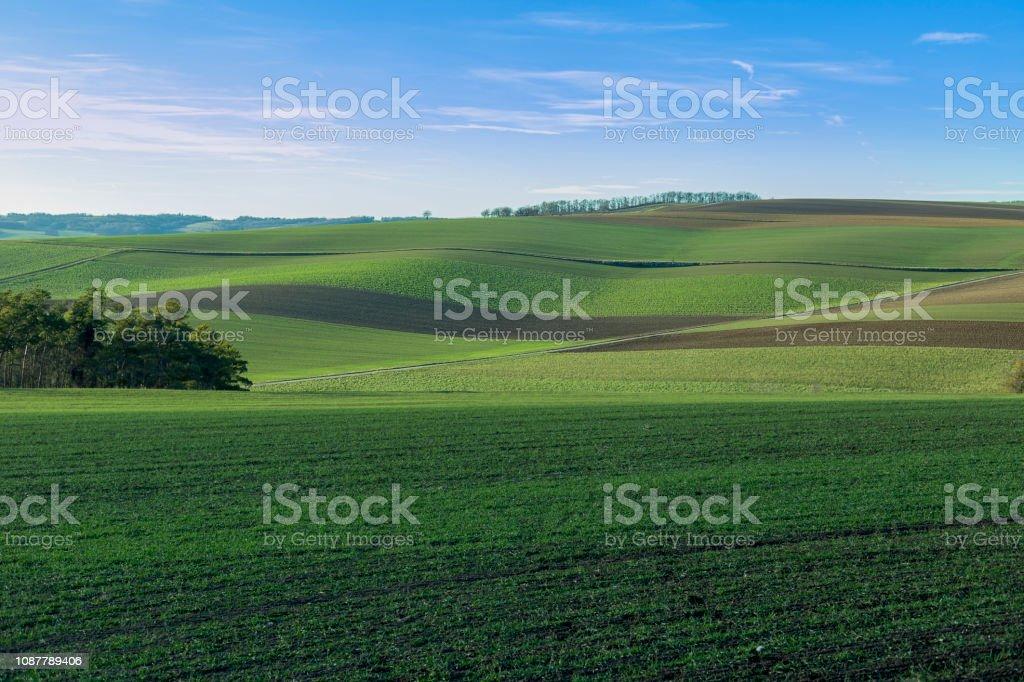 Grünen Ackerland – Foto