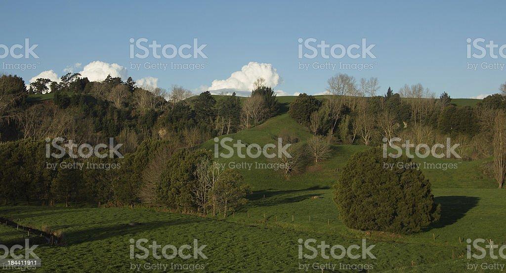 Green Farmland royalty-free stock photo