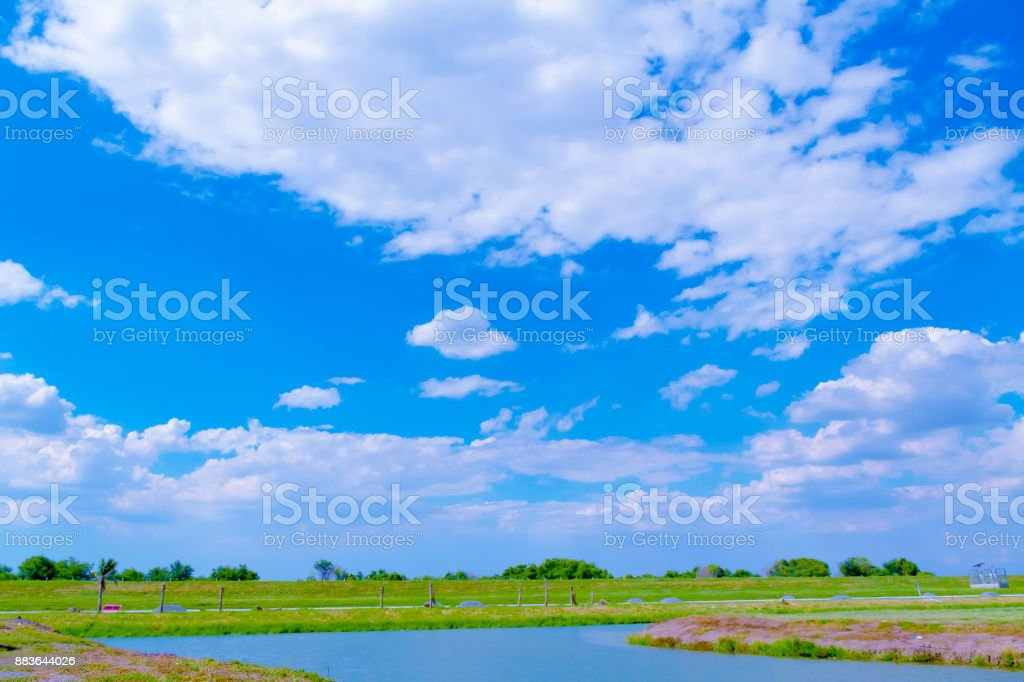 green field and blue sky background stock photo