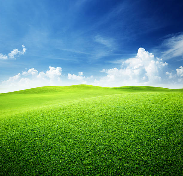 green field and blue sky - hill stock pictures, royalty-free photos & images