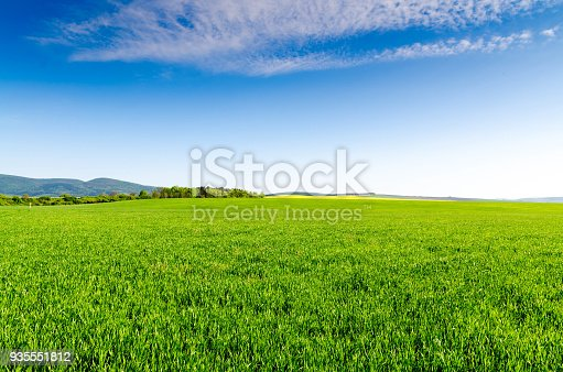 istock green field and blue sky 935551812