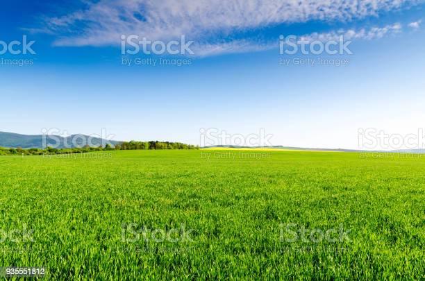 Green field and blue sky picture id935551812?b=1&k=6&m=935551812&s=612x612&h=klmjthufxvn8w kpcslcfamxfjqml3g0ti 2lo2x4wg=