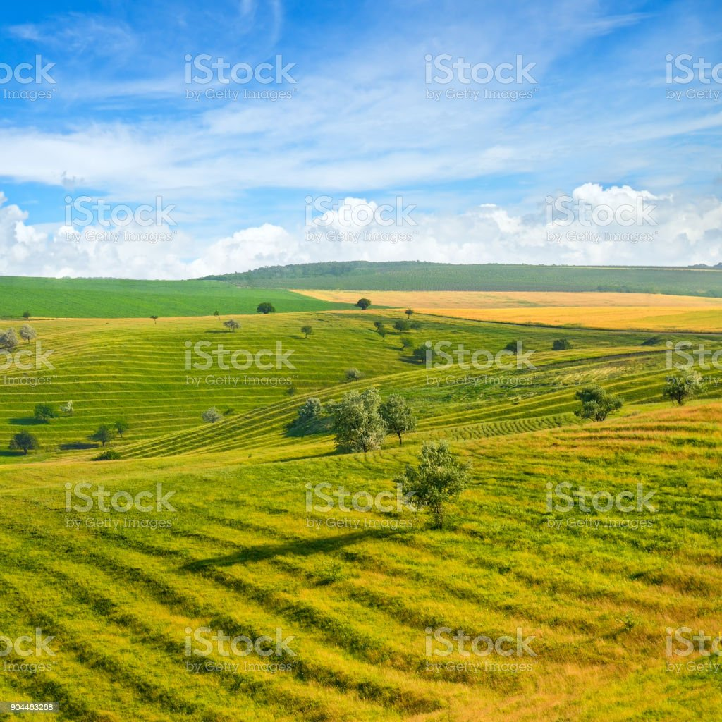 Green field and blue sky. Picturesque hills formed by an old river terrace. Moldova. stock photo