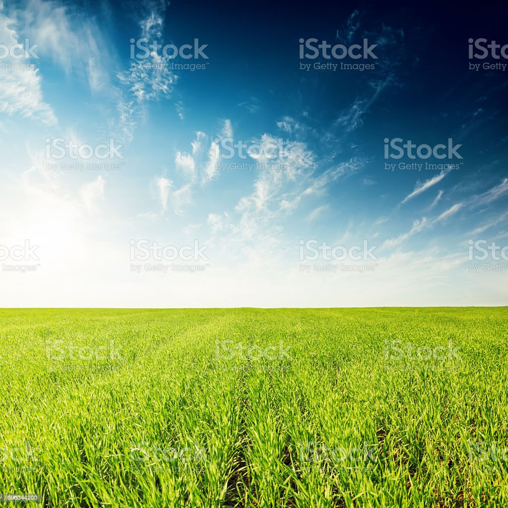 green field and deep blue sunset with clouds royalty-free stock photo
