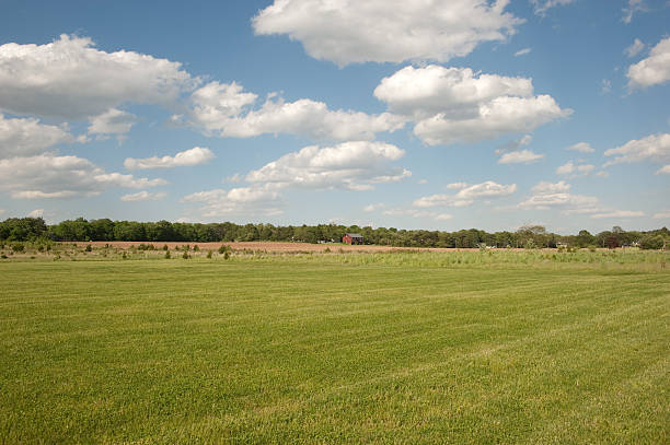 Green field and single house stock photo