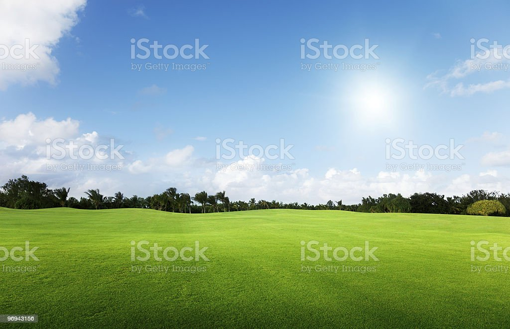 Green field and trees with bright blue sky royalty-free stock photo
