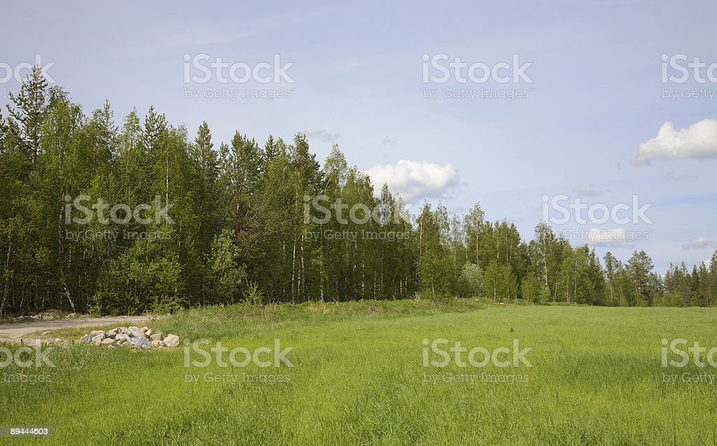 Green field and wood royalty-free stock photo