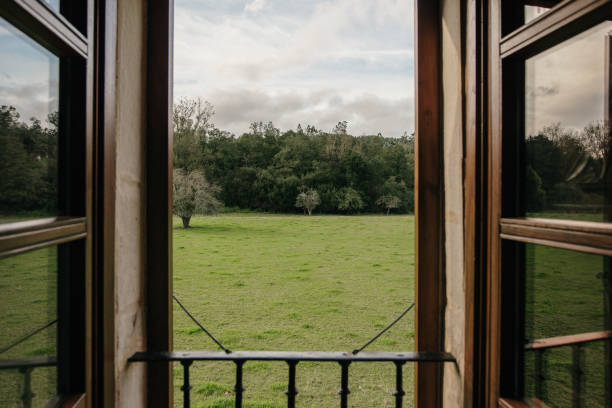 Green field as seen from window stock photo