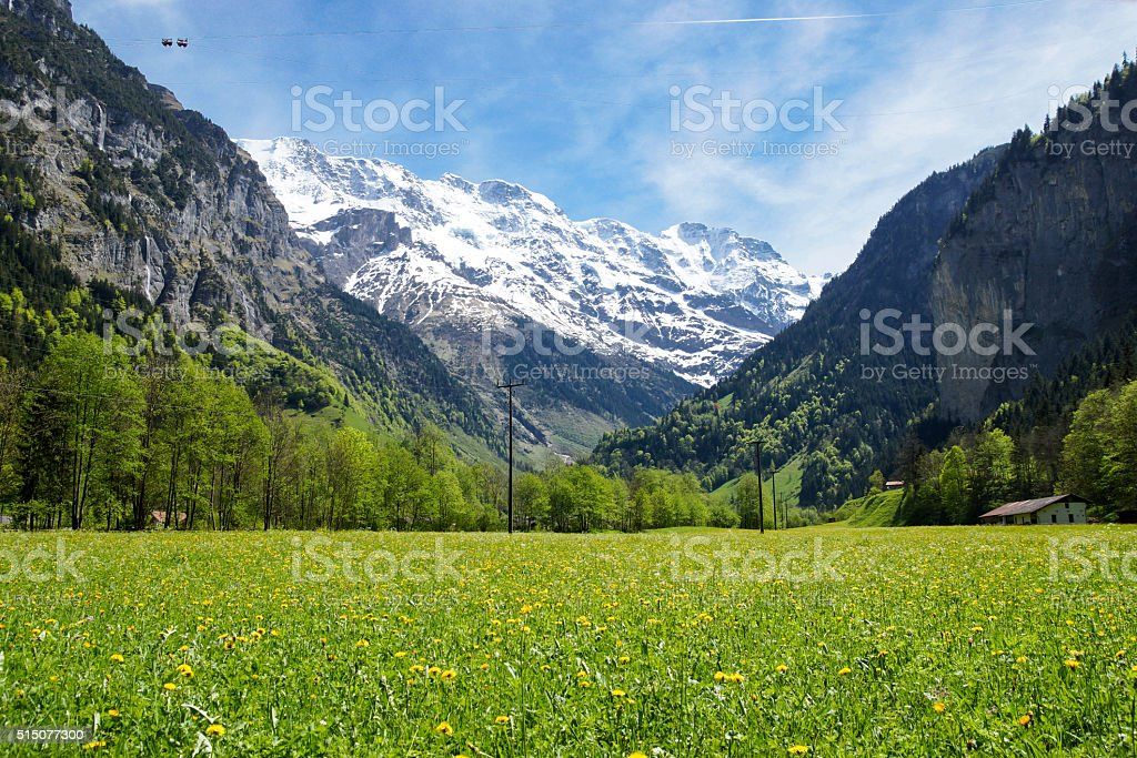 Green field at the base of the Swiss Alps stock photo