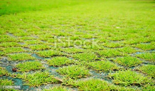 Stone - block, Footpath, Moss, Backgrounds, Cobblestone