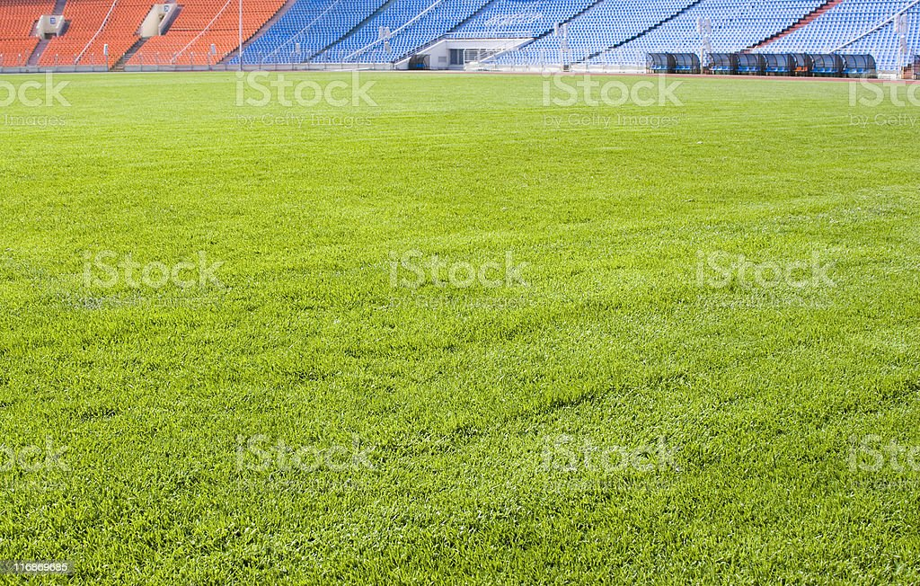 Green field for playing sports stock photo