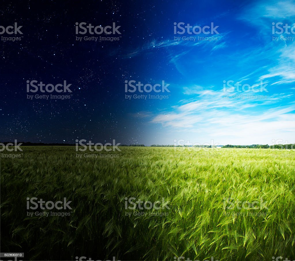 Grüne Feld in Tag und Nacht. – Foto
