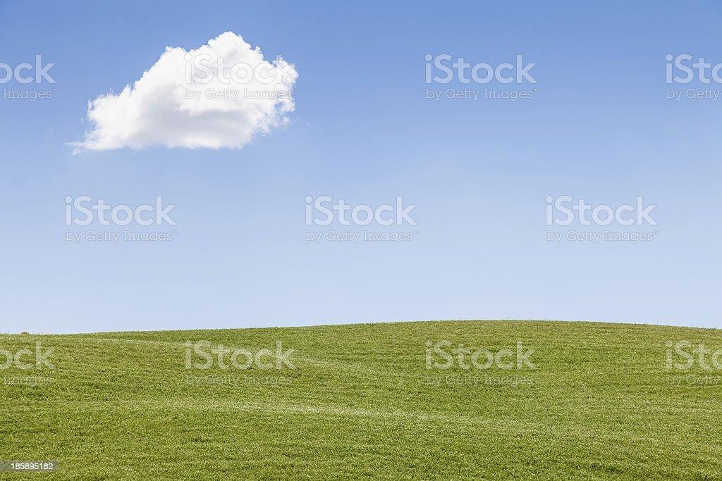 Green field in Tuscany royalty-free stock photo