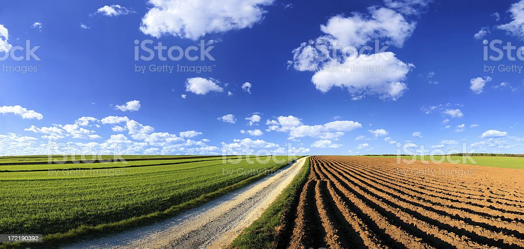 Green field Landscape - Royalty-free Agricultural Field Stock Photo