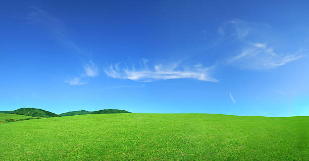 グリーンフィールド-景観 ストックフォト