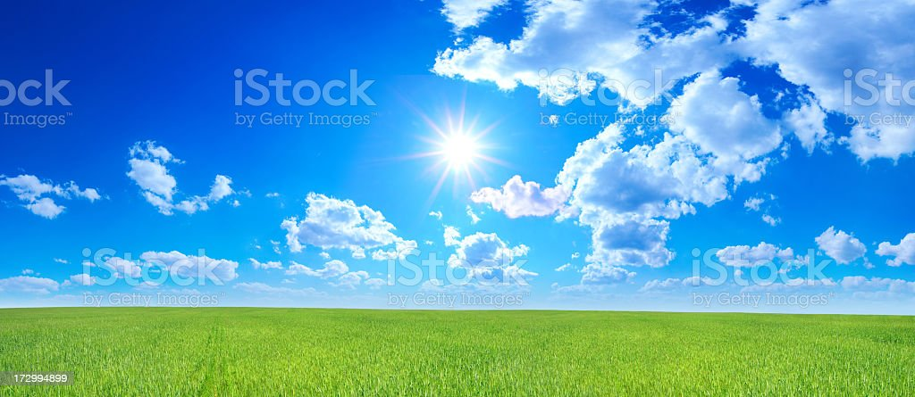 Green field - Landscape - Royalty-free Agricultural Field Stock Photo