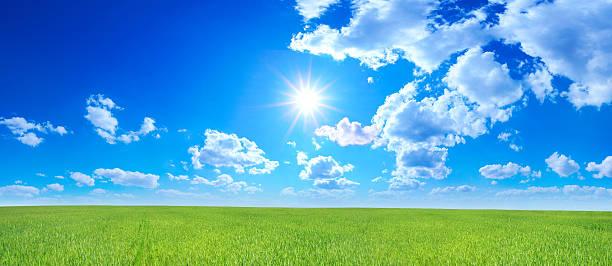 Green field - Landscape stock photo