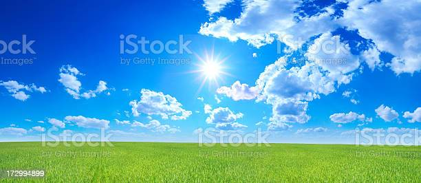 Green Field Landscape Stock Photo - Download Image Now