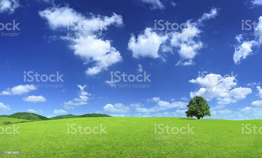 Green field - Landscape - Royalty-free Abstract Stock Photo