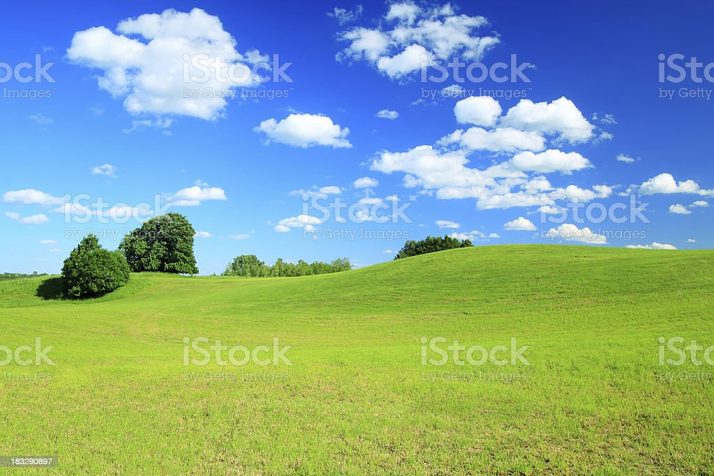 Green field Landscape royalty-free stock photo