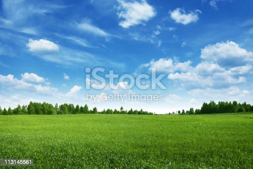 istock Green field lined by trees on clear day 113145561