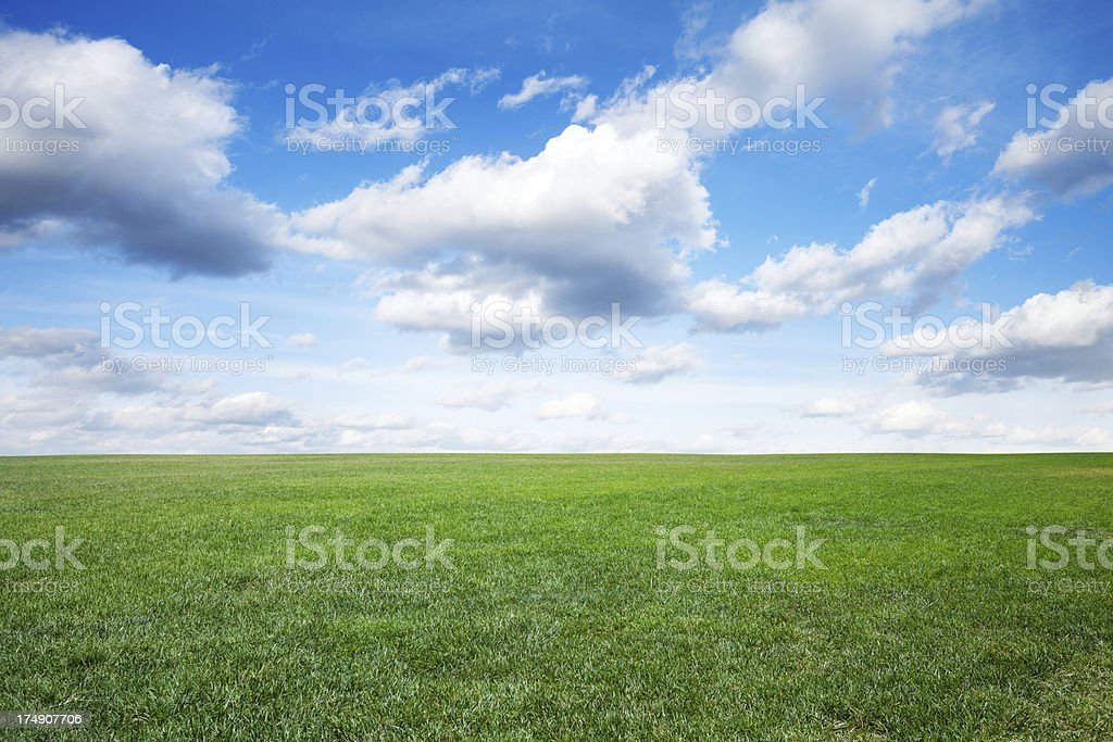 Green field of grass under blue sky royalty-free stock photo