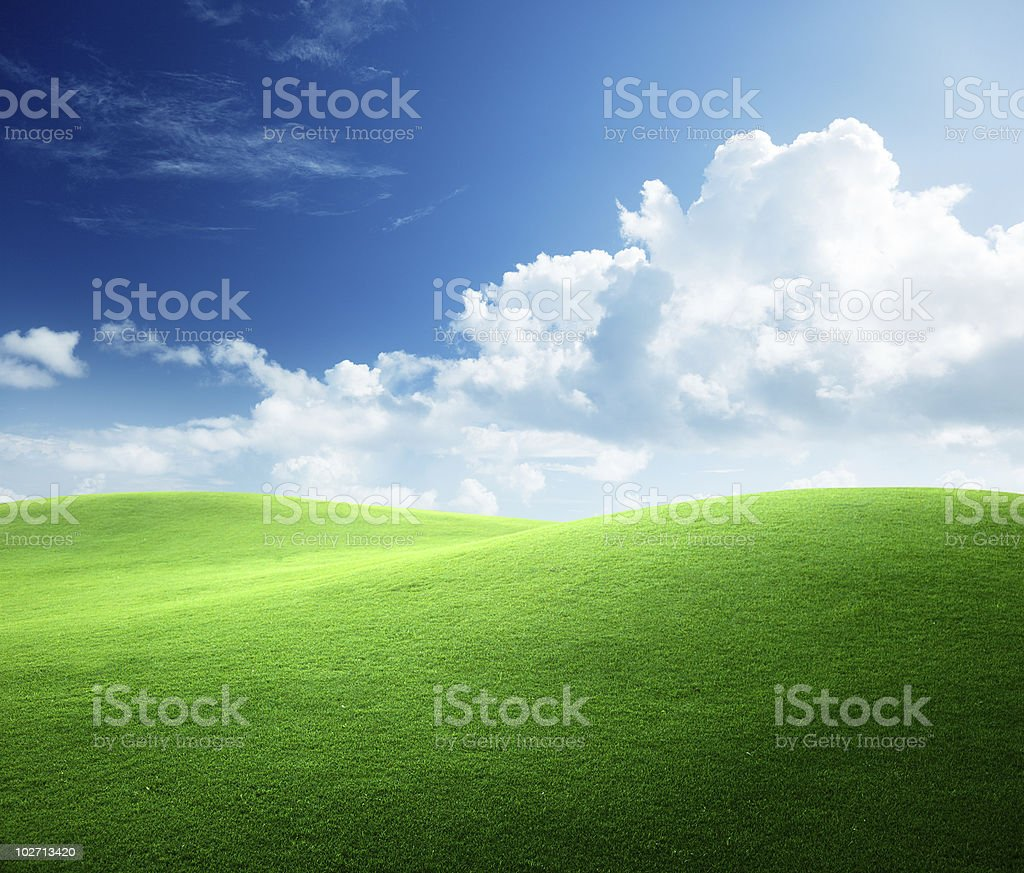 green field of spring grass and cloudy sky stock photo