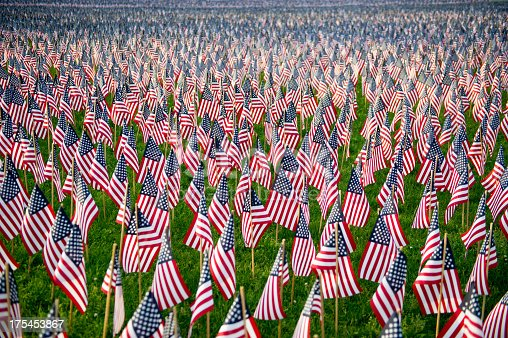 istock Green field of United States of America flags 175453867