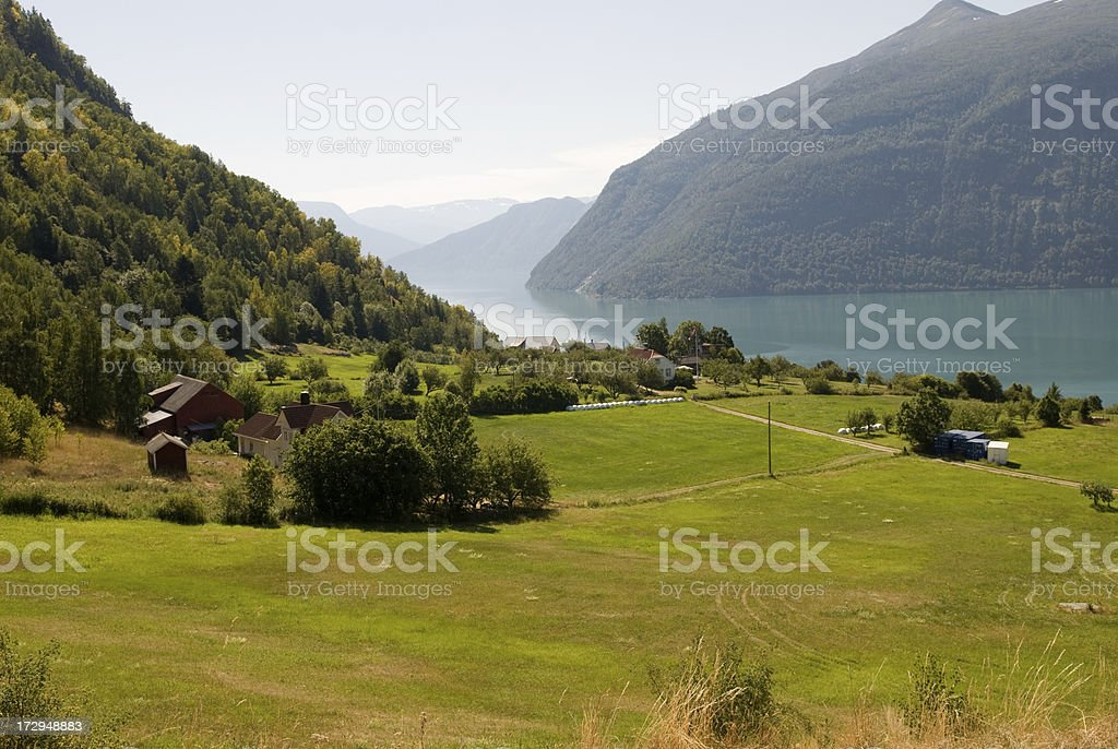 Green field. royalty-free stock photo