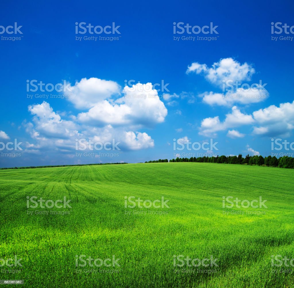 green field royalty free stockfoto