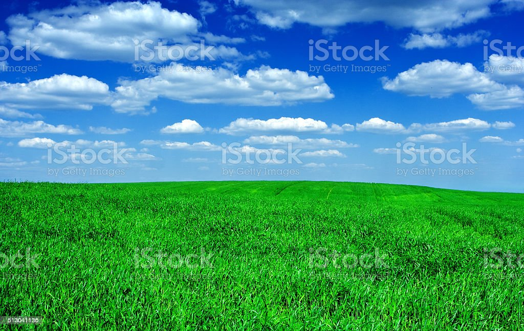 green field sky stock photo