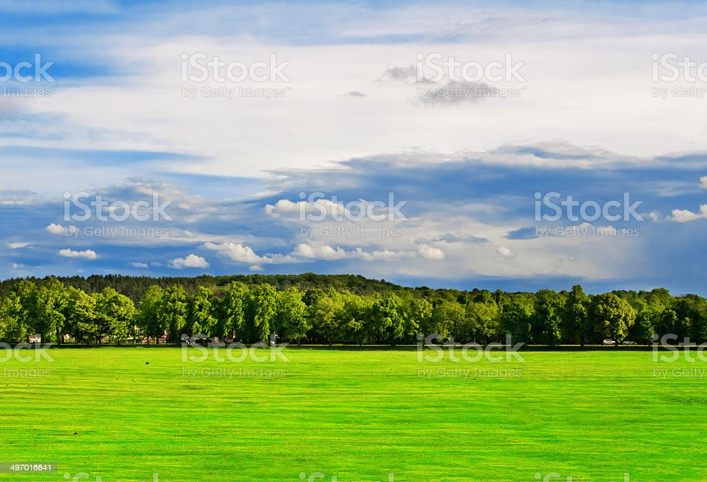 Green field with trees under the bright sky stock photo