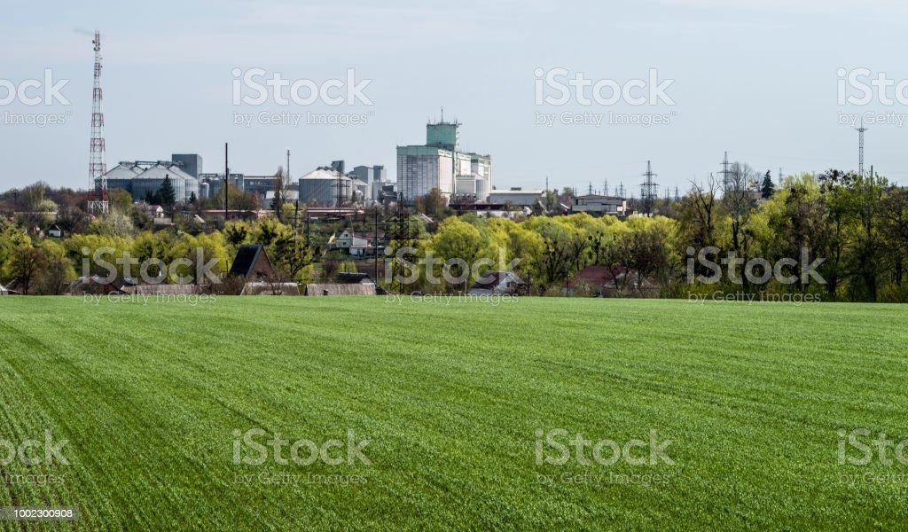 Campo verde com brotos jovens antes o panorama do complexo agro-industrial - foto de acervo