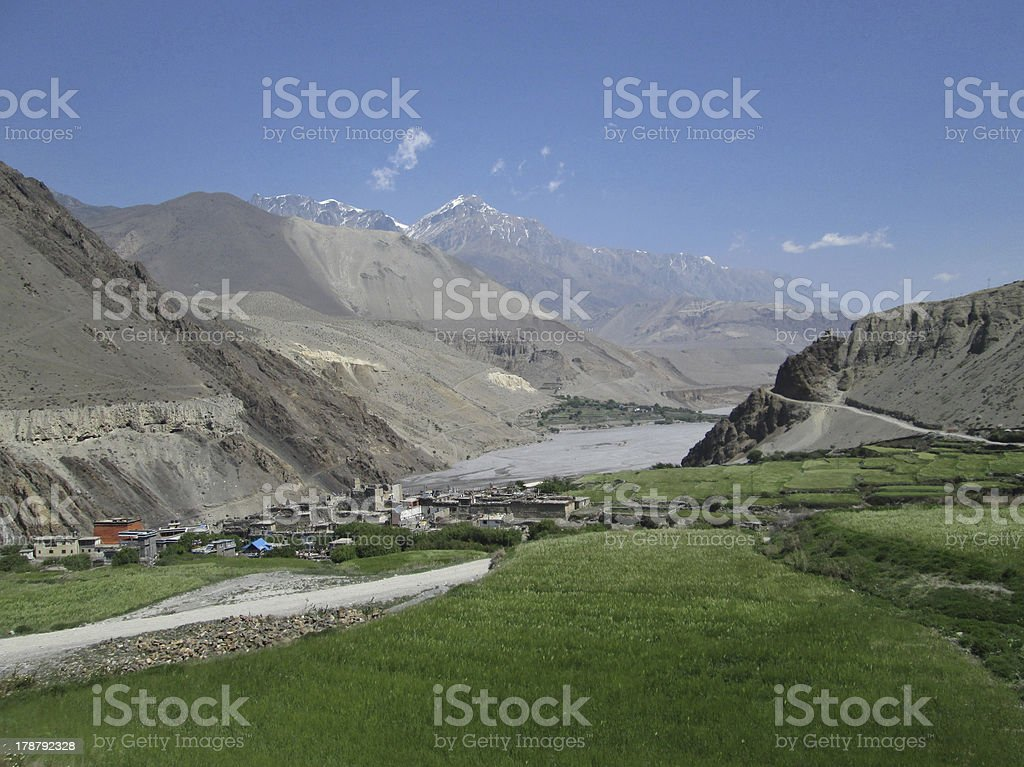 Green fields and Kagbeni, Nepal royalty-free stock photo