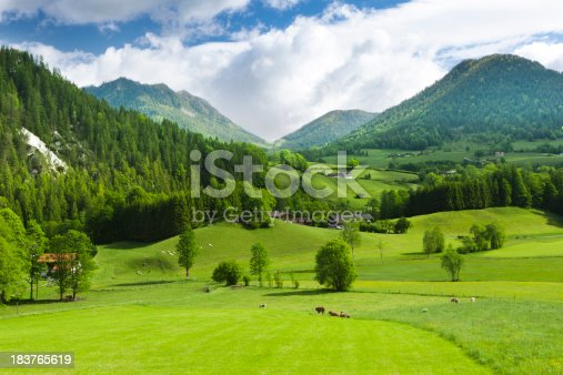 A beautiful alpine field in southern Germany. Grass in the foreground with distant woods and summit.