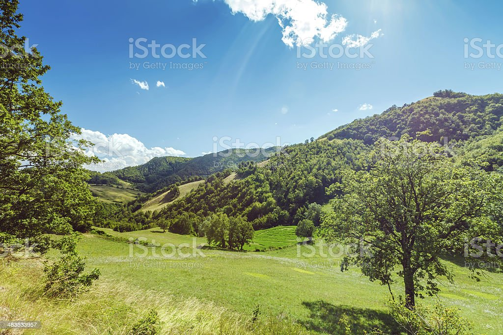 Green fields and mountains, Italy royalty-free stock photo