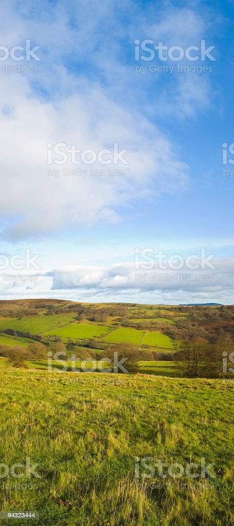 Green fields, blue sky, white clouds royalty-free stock photo