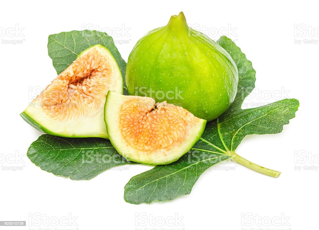 Green fig fruit isolated stock photo