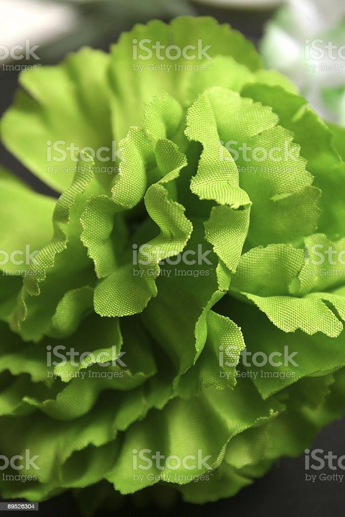 Flores verde foto de stock libre de derechos