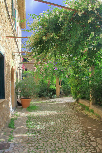Green flowering patio in the Spanish province.