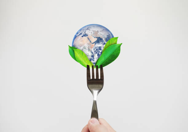 green food, environmental concept. hand holding fork with leaves and globe. element of this image are furnished by nasa - abstract logo stock photos and pictures