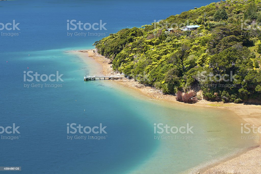 Green forest and blue water royalty-free stock photo