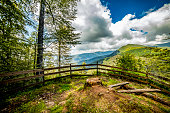 Beautiful mountain forest and health trail - Summer in the green forest\n - Spiritual peace and freedom