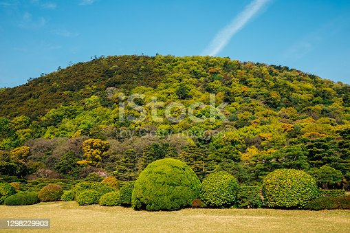 istock Green forest hill in Takamatsu, Japan 1298229903